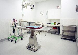 surgery pic 1