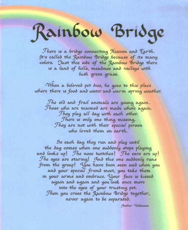 The Rainbow Bridge | McPhillips Animal Hospital Winnipeg ...