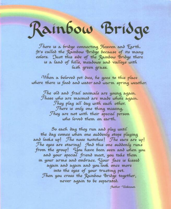 The Rainbow Bridge Mcphillips Animal