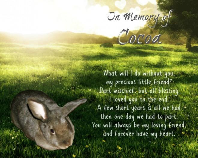 rsz_cocoa_memorial
