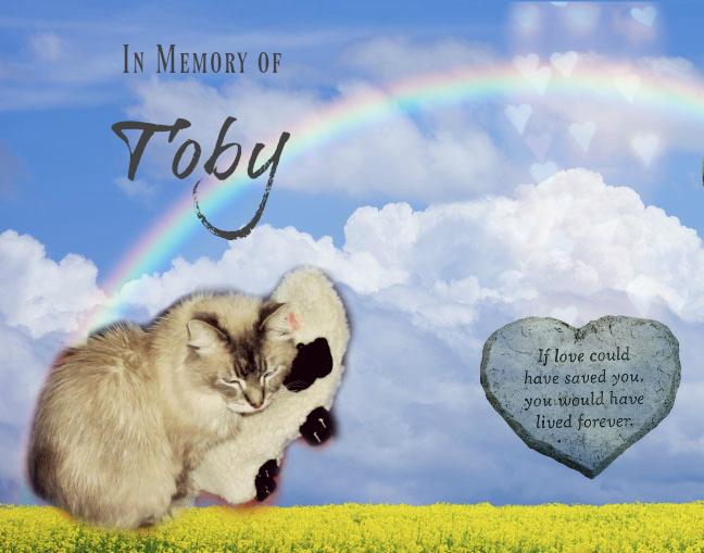 Toby Black memorial