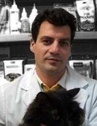 Dr. I.T. Bularca